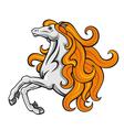 Stallion horse vector