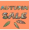 Autumn sale words with hand drawn elements vector