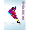 Al 1020 skate 02 vector