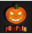 Black halloween with pumpkin vector