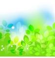 Summer leaves background vector