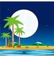 Night in tropic vector