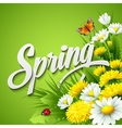 Fresh spring background with dandelions and vector