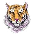 Artwork tiger sketch drawing vector