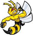 Fighting hornet vector