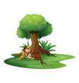 A young girl relaxing under a big tree vector