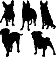 Set of silhouettes of pug french bulldog shepherd vector