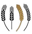Wheat ear icon set vector