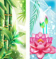 Vertical banners with bamboo and lotus vector