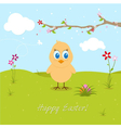 Easter chicken searching eggs vector