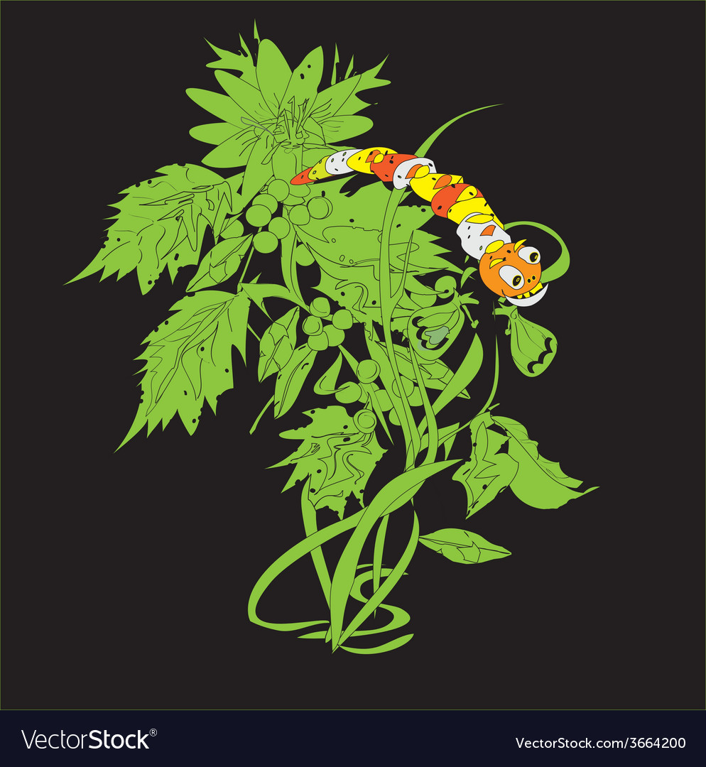 Caterpillar on a plant vector | Price: 1 Credit (USD $1)