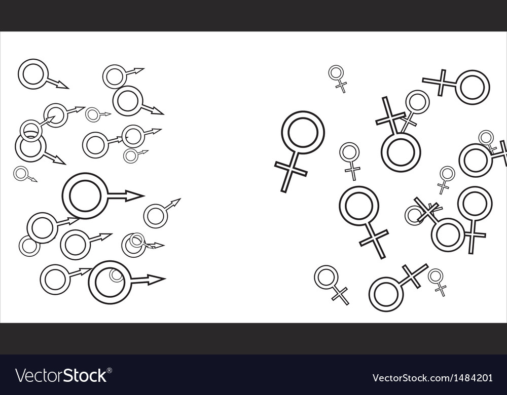 Female and male cells vector | Price: 1 Credit (USD $1)