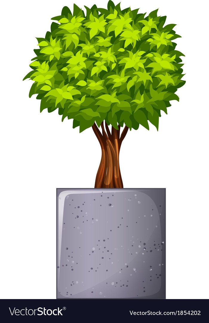 A green plant and the concrete gray pot vector   Price: 1 Credit (USD $1)