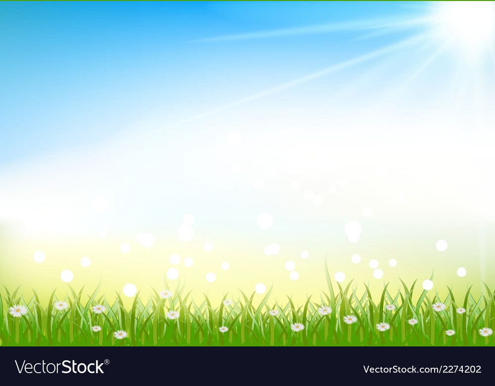 Nature background with grass and light effects vector | Price: 1 Credit (USD $1)