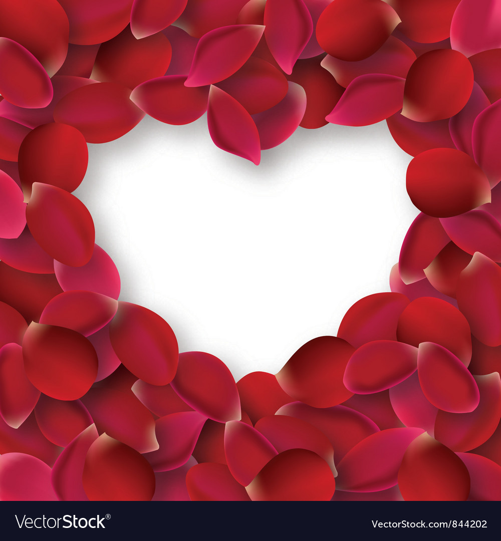 Rose petals vector   Price: 1 Credit (USD $1)