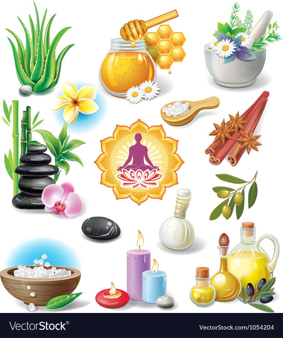 Set of spa treatment symbols vector   Price: 5 Credit (USD $5)