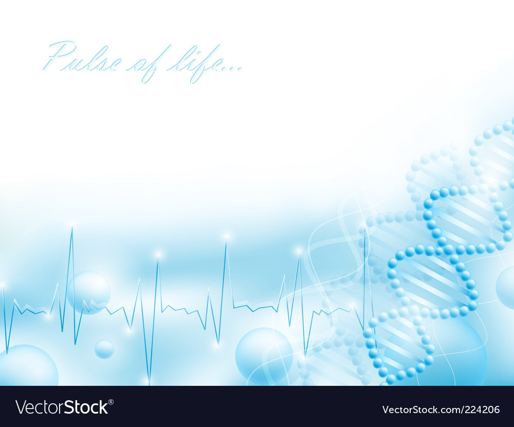Pulse of life vector | Price: 1 Credit (USD $1)