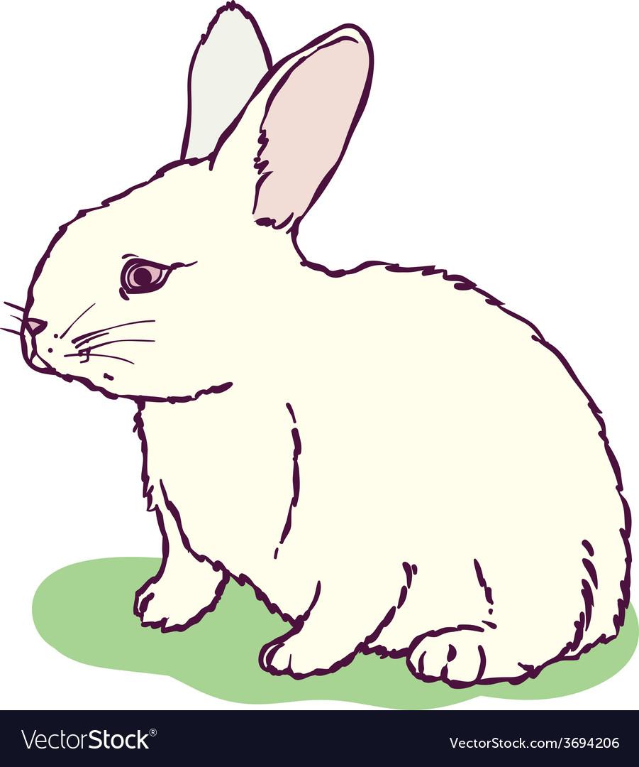 White rabbit vector | Price: 1 Credit (USD $1)