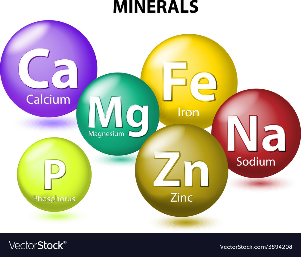 Essential chemical minerals vector | Price: 1 Credit (USD $1)