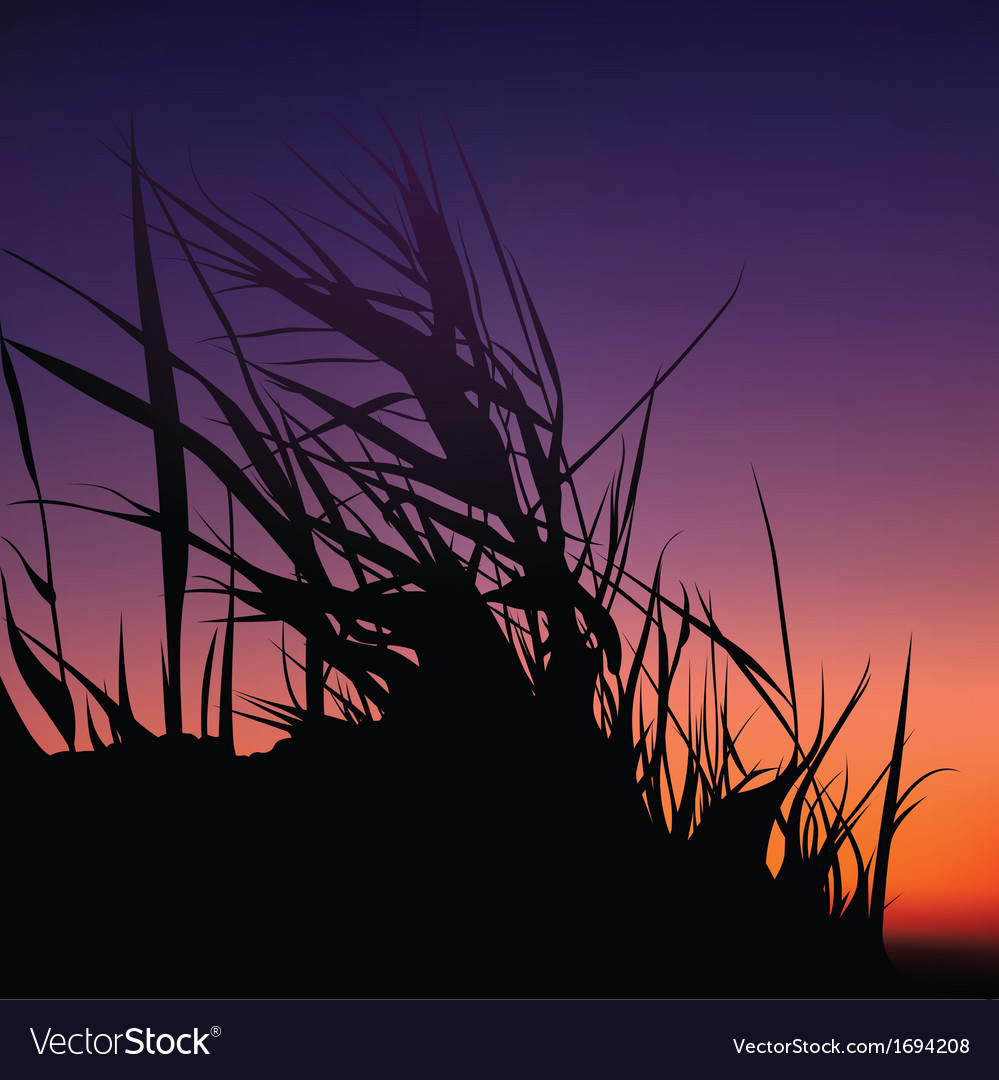 Sunset and grass silhouette vector | Price: 1 Credit (USD $1)