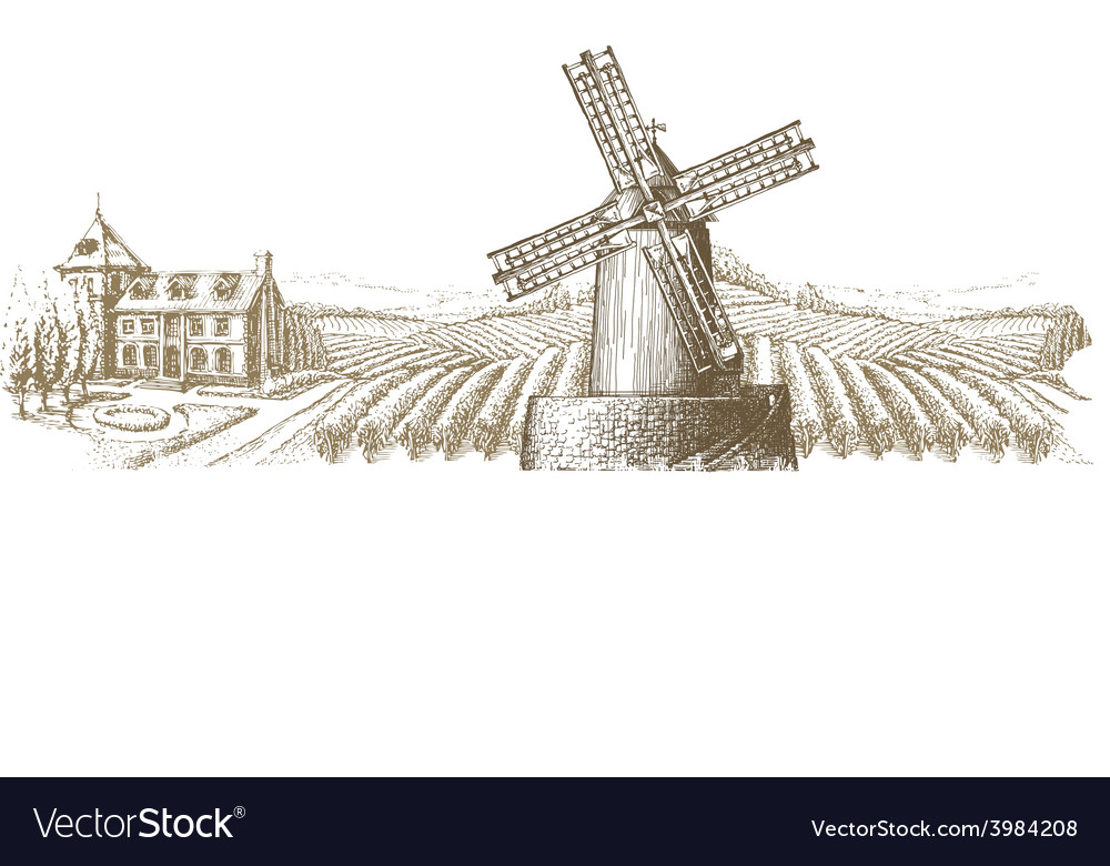 Vineyard logo design template farm or vector | Price: 1 Credit (USD $1)