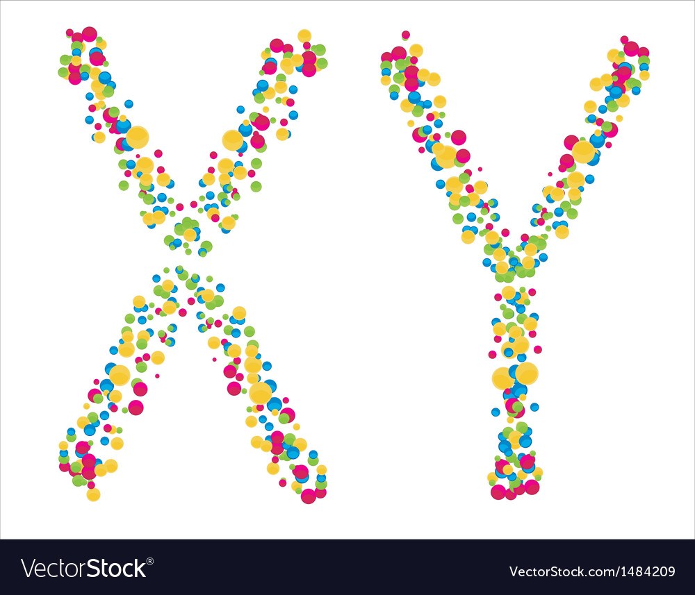 Chromosomes x y on a white background vector | Price: 1 Credit (USD $1)