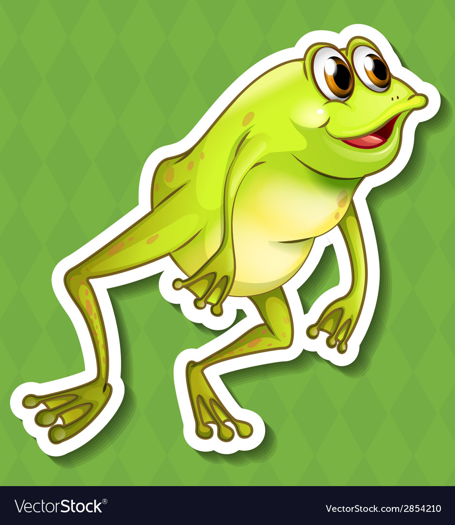 Frog vector | Price: 1 Credit (USD $1)