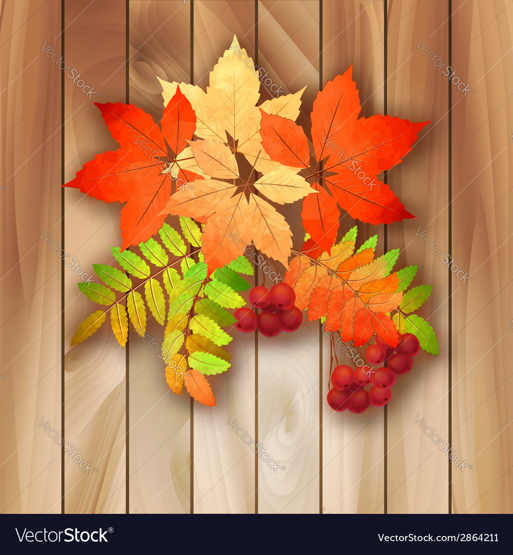 Autumn background with leaves on a wood texture vector | Price: 1 Credit (USD $1)