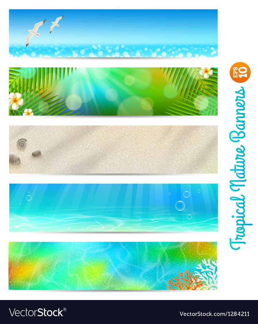 Travel and vacation banners with tropical natures vector | Price: 3 Credit (USD $3)