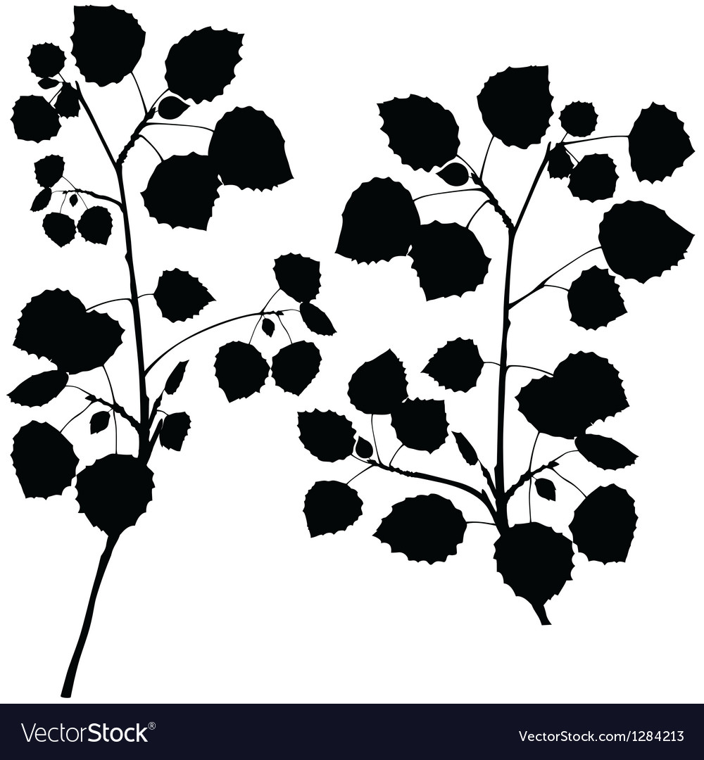Branch silhouettes vector | Price: 1 Credit (USD $1)