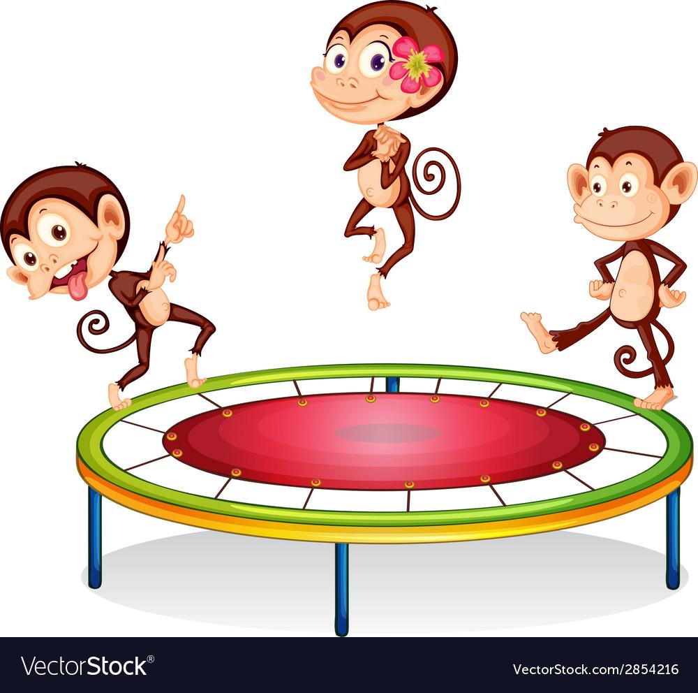 Monkey vector   Price: 1 Credit (USD $1)