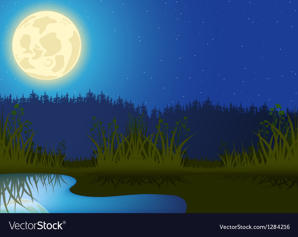 Night landscape vector | Price: 1 Credit (USD $1)