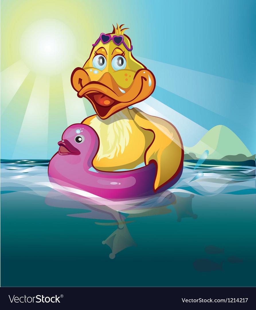 Duck swim vector | Price: 3 Credit (USD $3)