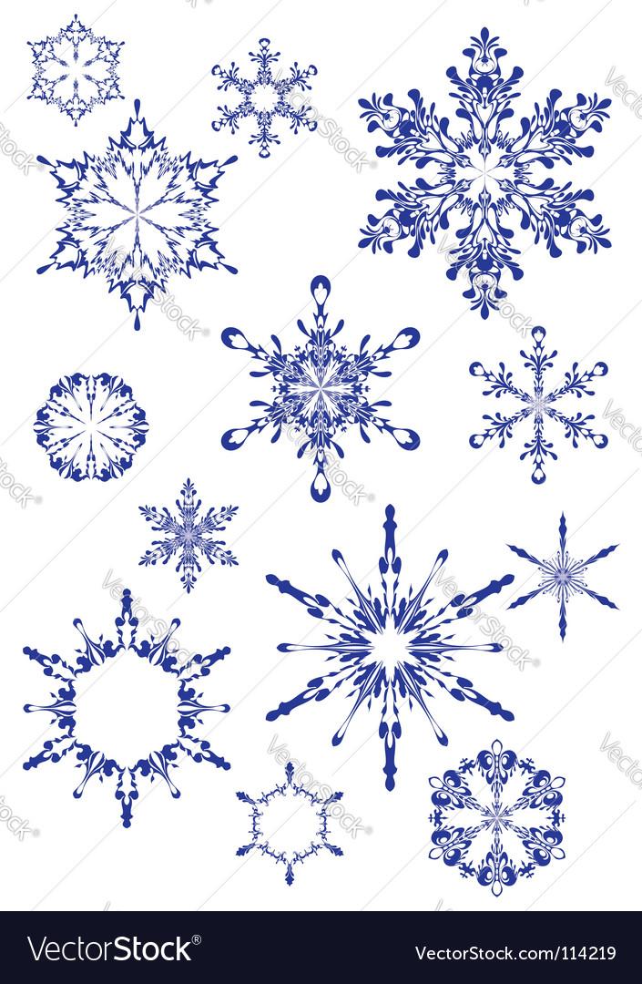 Set of snowdrops vector