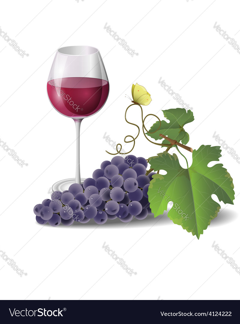 Wine and grape vector | Price: 1 Credit (USD $1)