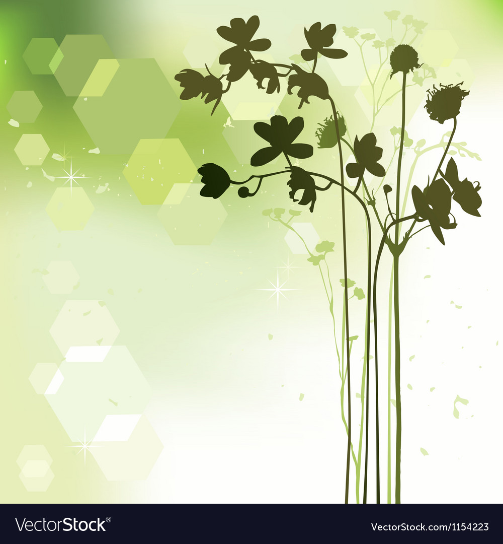 Floral background orchid vector | Price: 1 Credit (USD $1)