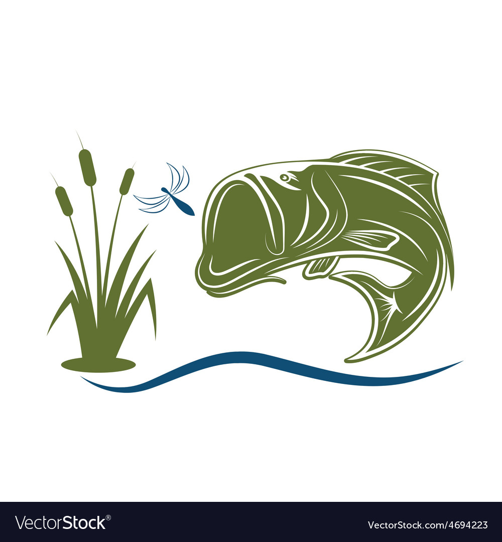 Jumping bass for dragonfly vector | Price: 1 Credit (USD $1)