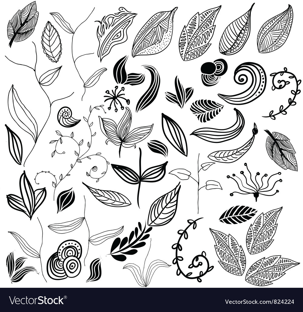 Leaf variation vector | Price: 1 Credit (USD $1)
