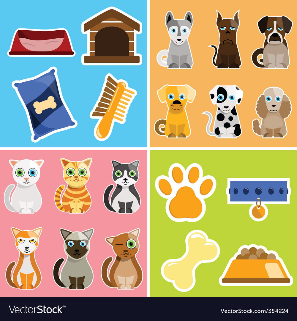Pet animals and objects vector | Price: 1 Credit (USD $1)