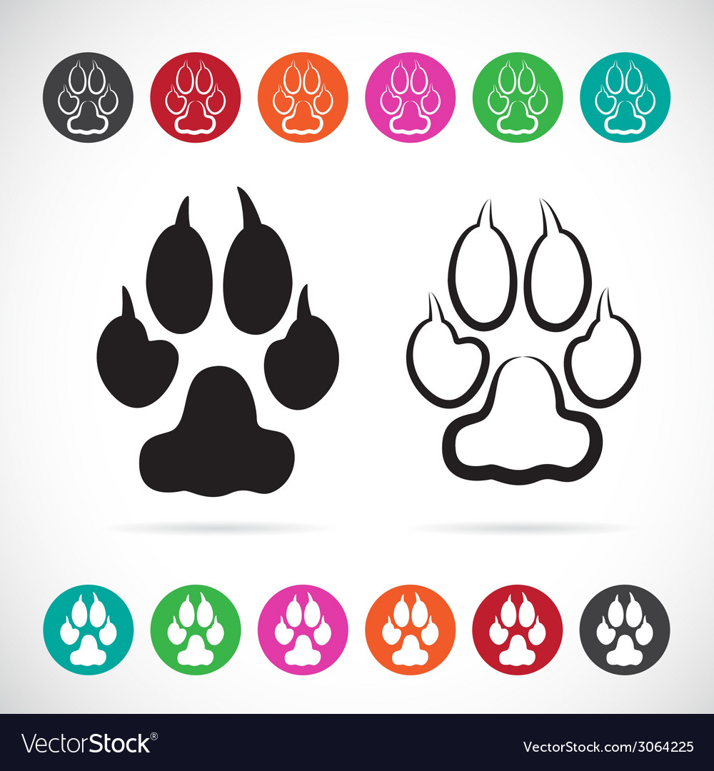 Image of paw print vector | Price: 1 Credit (USD $1)