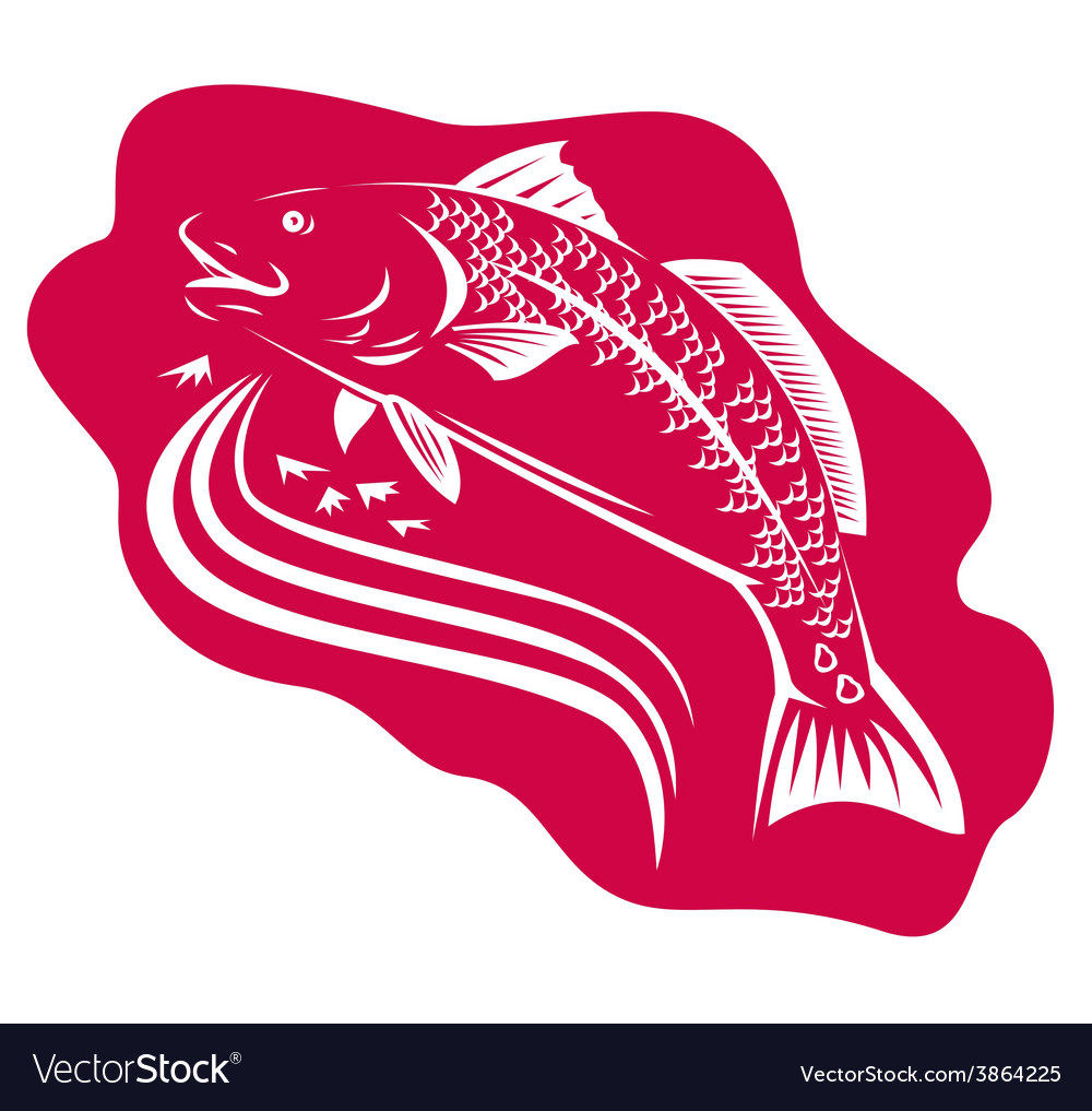 Red drum spot tail bass fish retro vector | Price: 1 Credit (USD $1)