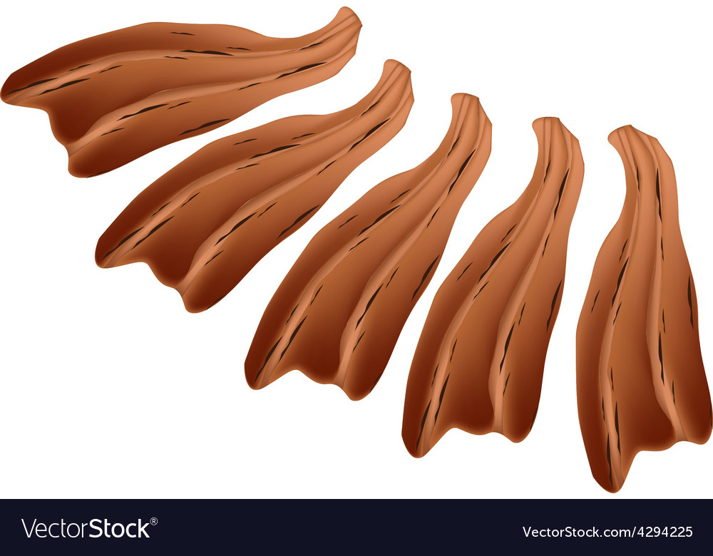 Smoked eel or roast unagi on white vector | Price: 1 Credit (USD $1)