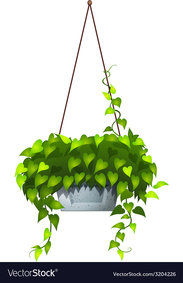 A hanging plant vector | Price: 1 Credit (USD $1)