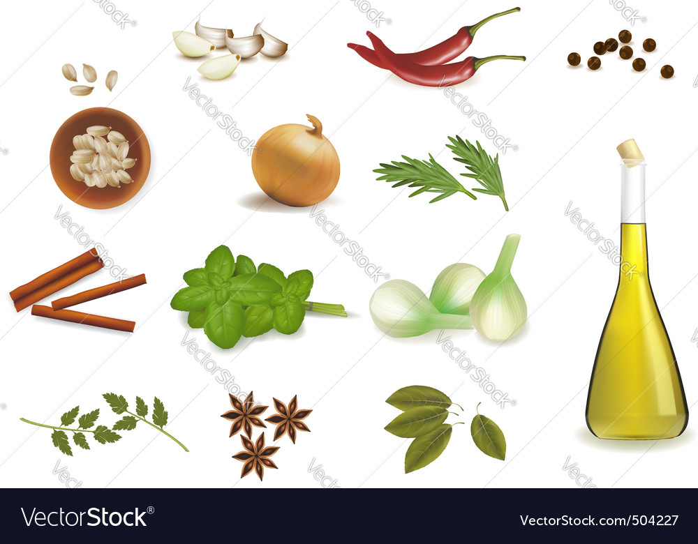 Group with spice vector | Price: 3 Credit (USD $3)