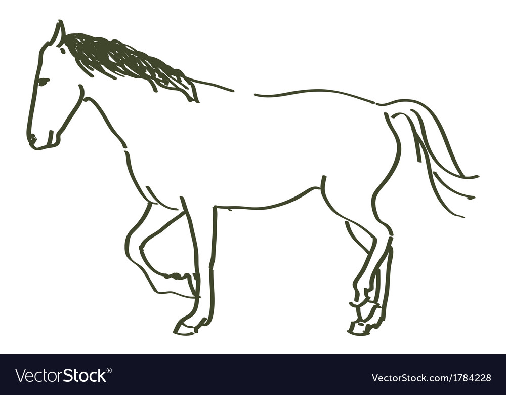 Hand drawn horse vector | Price: 1 Credit (USD $1)