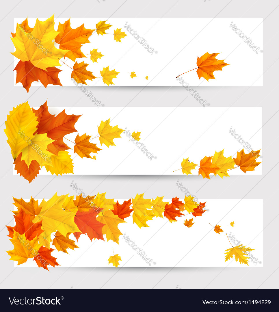 Autumn leaves banners vector | Price: 1 Credit (USD $1)