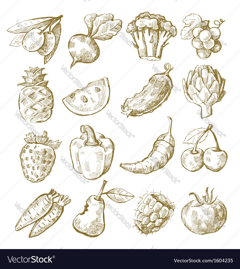 Hand draw fruit and vegetable vector | Price: 1 Credit (USD $1)