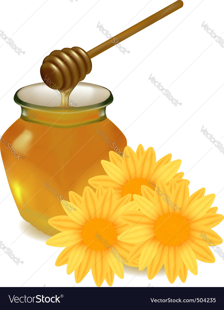 Honey with yellow flowers vector | Price: 1 Credit (USD $1)