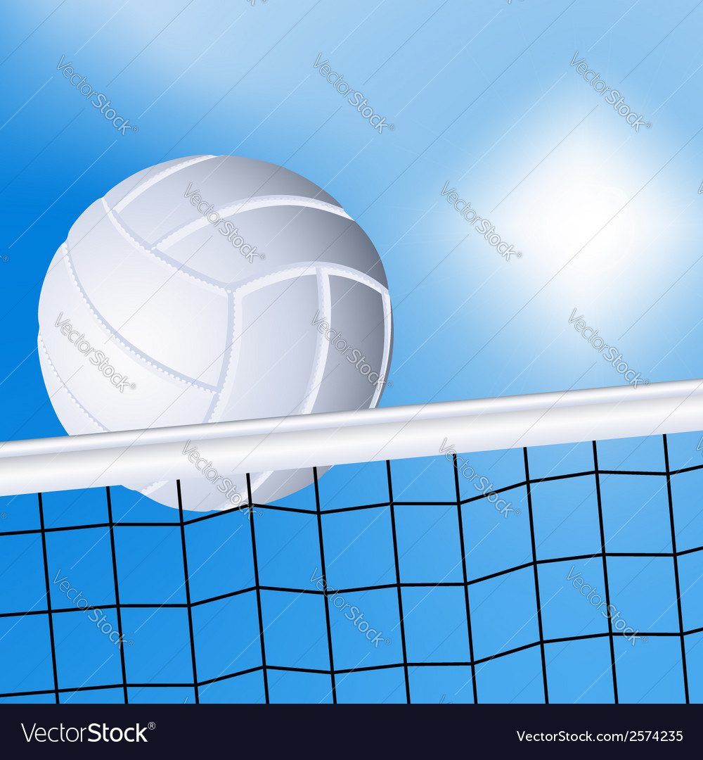 Volleyball and the net vector | Price: 1 Credit (USD $1)