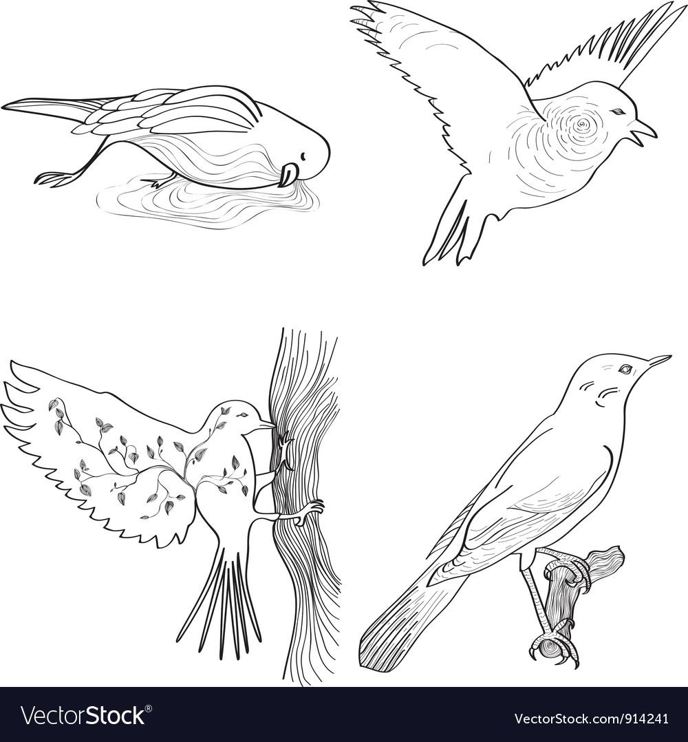 Storytelling birds vector